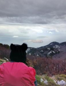 Pogled s Vučjaka prema Kvarnerskim otocima: Fotografija: privatna arhiva autorice.